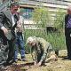 Jane Goodall planta un arbre a l'edifici de l'ICTA amb Martí Boada i Jordina Belmonte