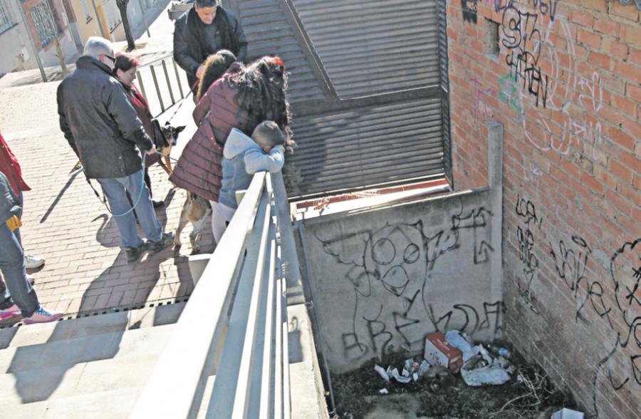Numerosos vecinos se han agolpado en el pasaje para ver de cerca al animal