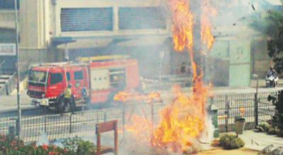La Palmera del Jardí de l'Escola Industrial cremant