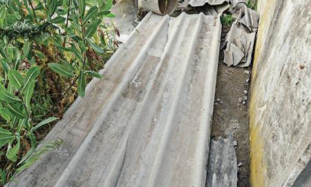 Plaques i materials d'amiant als horts de la C-58