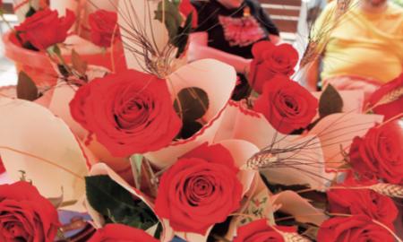 Les roses vermelles han compartit protagonisme amb les roses grogues
